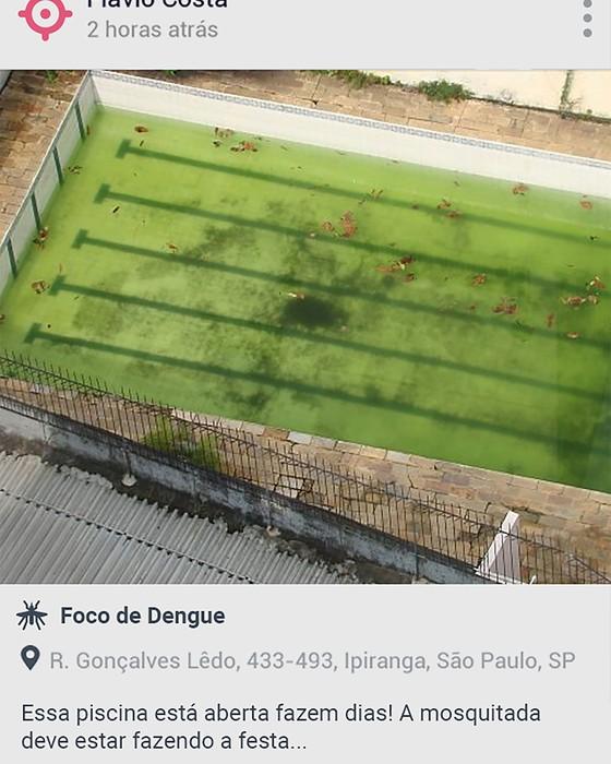 O cidadão envia uma foto à prefeitura, com informações sobre o foco do mosquito (Foto: Divulgação)