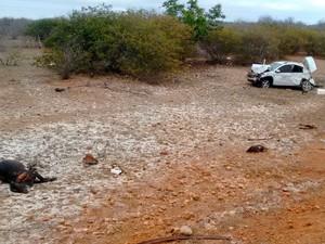 Vaca morreu após ser atingida por carro em acidente em Juazeiro (Foto: Henrique Morgado/TV São Francisco)