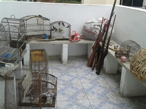Materiais foram apreendidos na casa do homem. (Foto: reprodução\Polícia Militar do Meio Ambiente)