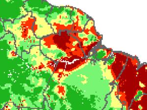 Previsão de queimadas para o Amapá nesta quarta-feira (18); áreas críticas estão em vermelho (Foto: INPE/Reprodução)