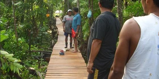 Em 2012, uma ponte de 690 m foi feita para ligar as casas, na área da várzea, até as roças, em terra-firme (Foto: Divulgação)