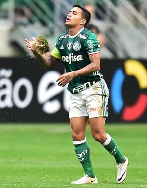 Dudu com pedaço da gramado que soltou - Palmeiras x Coritiba (Foto: Marcos Ribolli)