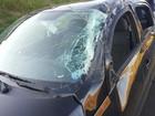 Capotagem deixa dois feridos na Rodovia Washington Luís (SP-310)