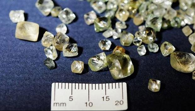 Mulher foi presa acusada de esconder mais de 10 mil diamantes em seu corpo (Foto: Royal Canadian Mounted Police/Divulgação)
