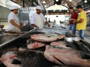 Pirarucu, tambaqui, jaraqui e pacu fazem parte dos peixes mais procurados.  (Foto: Diego Toledano/ G1 AM)