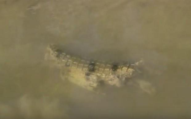 Cena ocorreu em rio no Território do Norte, na Austrália (Foto: Reprodução/YouTube/Al McGlashan)