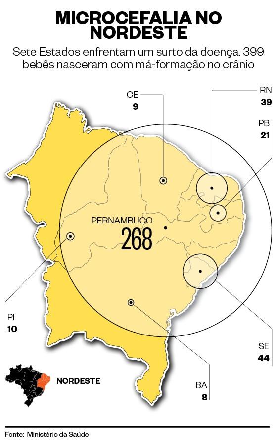 Infográfico sobre microcefalia no nordeste (Foto: Giovana Tarakdjian )