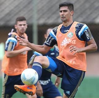 Leandro Almeida Palmeiras (Foto: César Greco / Ag. Palmeiras / Divulgação)