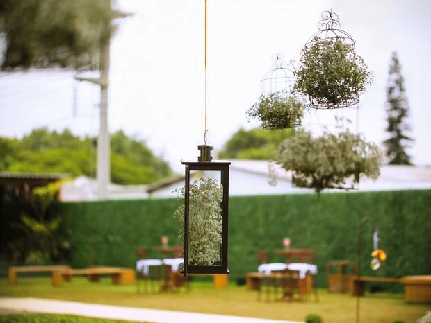 Gaiolas e lanternas cheias de mosquitinhos foram amarradas numa grande árvore (Foto: Coletivo 3)