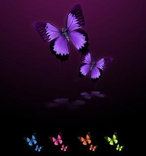 ícones de borboletas