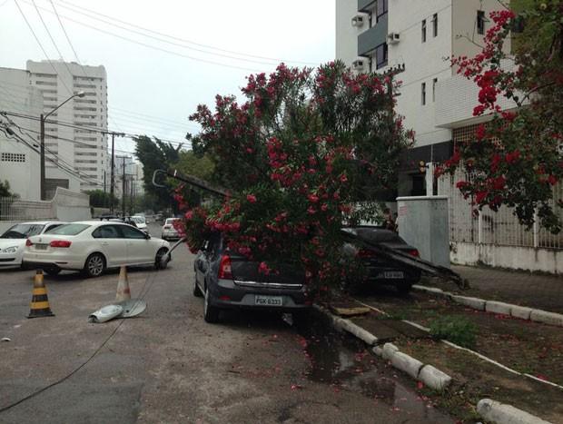 Poste caiu em cima de veículo na Rua Marques de Valença, em Boa Viagem.  (Foto: Foto: Vivianne Leão / Acervo pessoal)