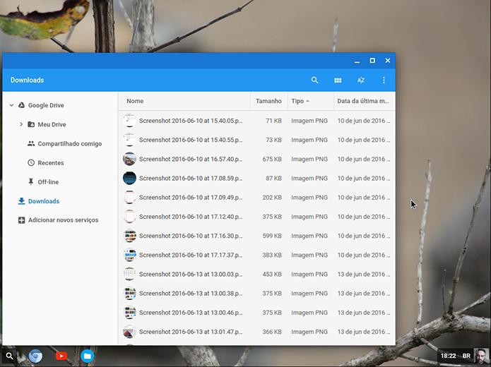 CloudReady é uma versão do Chrome OS, sistema do Google baseado em Linux, livre para qualquer PC (Foto: Reprodução/Filipe Garrett)
