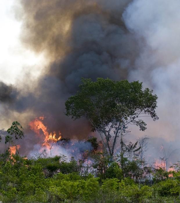 Foto de arquivo mostra incêndio em área de proteção na Floresta Nacional do Tapajós, no Pará, em 2009 (Foto: Antônio Scorza/AFP/Arquivo)