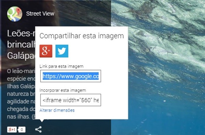 Oceans tem compartilhamento direto com Twitter e Google + (Foto: Reprodução/Raquel Freire)