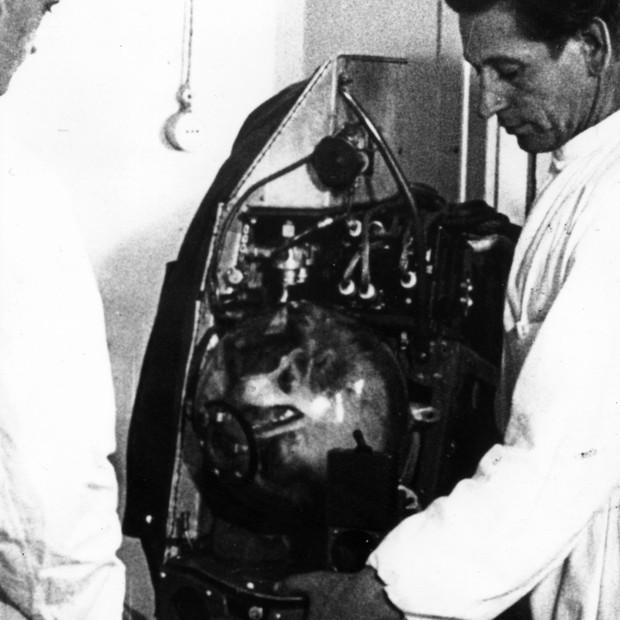 Em 5 de novembro de 1957, a cadela Laika foi lançada ao espaço no satélite soviético Sputnik II. Ela morreu durante a reentrada na atmosfera terrestre (Foto: Keystone/Getty Images)