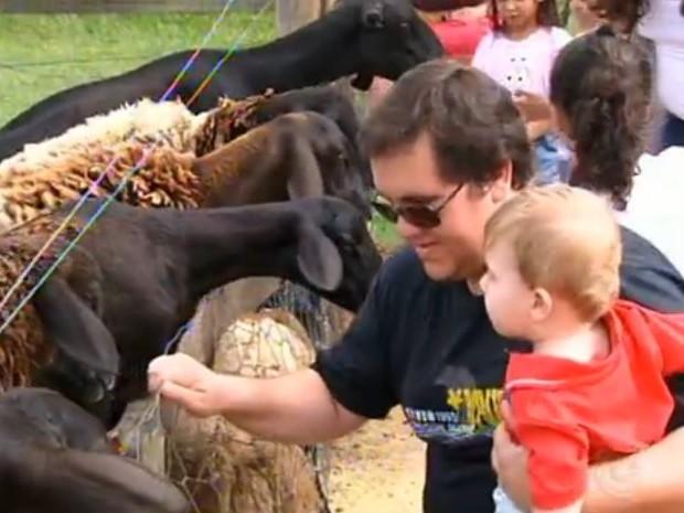 Crianças se divertem com animais (Foto: Reprodução/ TV TEM)