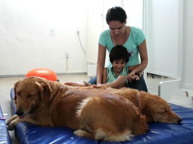 Cães recebem treinamento e tratamento veterinário adequados para o convívio com crianças (Foto: Natália Souza/G1)