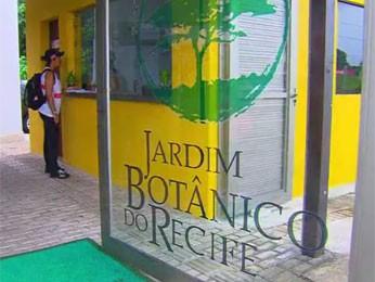 Jardim Botânico, Zona Oeste, abrigará mostra de bonsais (Foto: Reprodução / TV Globo)