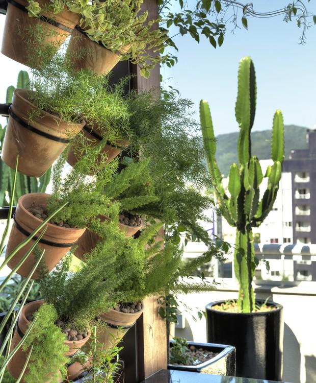 Varanda na cobertura ganha jardim vertical e em vasos ...
