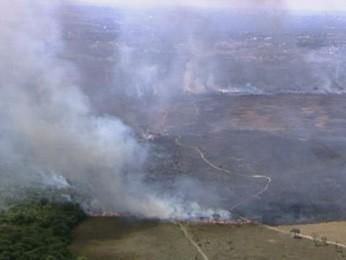 Incêndio em área de vegetação do Park Way, próximo ao Catetinho (Foto: TV Globo/ Reprodução)