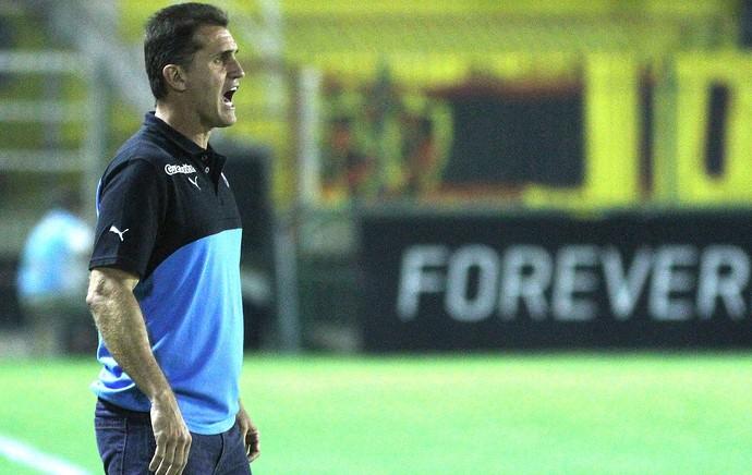 Vagner Mancini, Botafogo X Sport (Foto: Vitor Silva / SSpress)