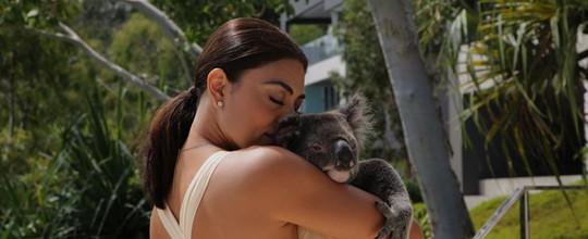 Juliana Paes se encanta por coala em viagem à Austrália