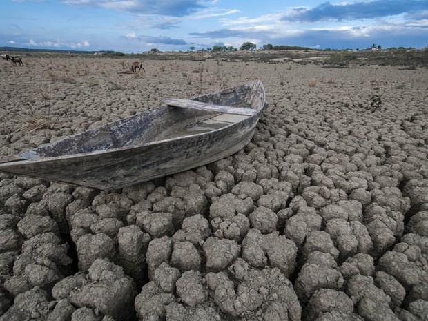Exposição mostra realidade dos açudes antes do período de chuva (Foto:  Jailson Fernandes)