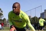 BLOG: O Palmeiras tem um novo goleiro titular?