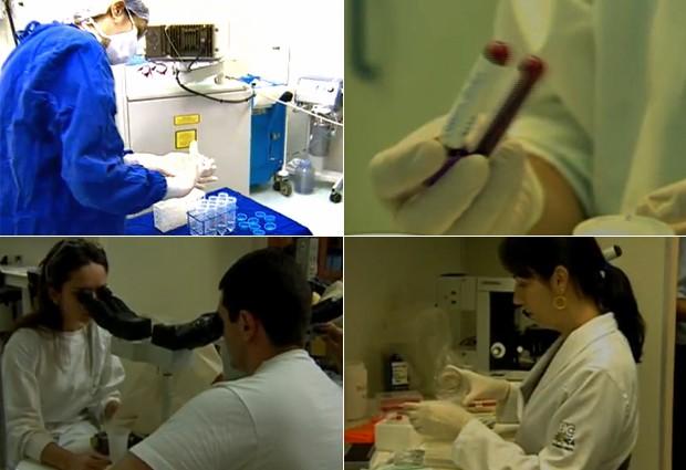 O profissional de biomedicina pode atuar com pesquisa e em clínicas, fazendo exames (Foto: Reprodução)