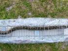 EUA testam 'ratoeira gigante' para capturar cobras invasoras