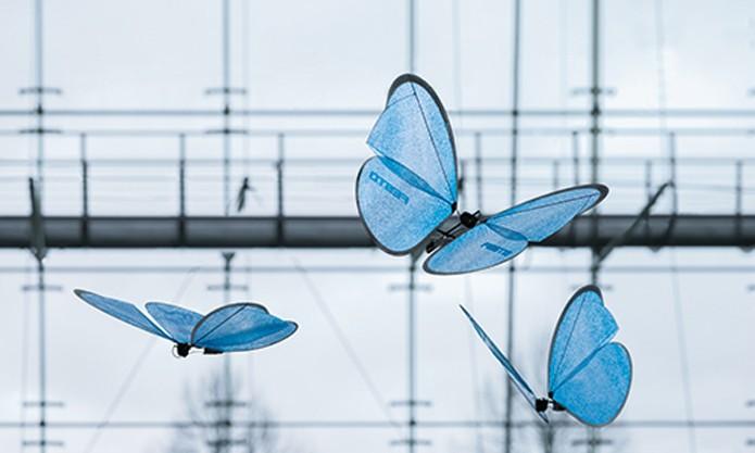 Borboletas são capazes de voar sem se chocarem (Foto: Reprodução/Festo)