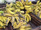 Banana fica escassa em comércios no AC e Seaprof culpa cheia histórica