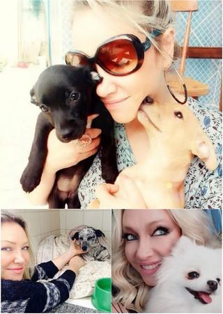 Deborah Blando não teve filhos: Sempre tive um amor incondicional por animais desde criança  (Foto: Reprodução do Instagram)