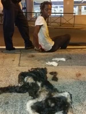 Mulher é detida e liberada após matar cachorro com canivete em Sorocaba (Foto: GCM Sorocaba/Divulgação)