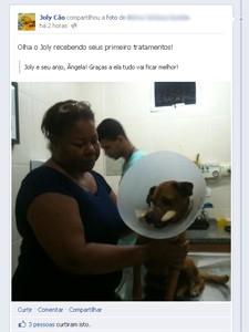 Cão agredido após morte da dona mobiliza vizinhos e consegue internação