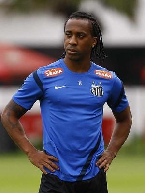 Arouca, volante do Santos (Foto: Ricardo Saibun/Divulgação Santos FC)
