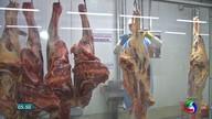 Reflexos da operação Carne Fraca são sentidos na cadeia produtiva da pecuária em MT