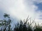 Fim de semana terá sol e chuvas em áreas isoladas de MS, diz Inmet