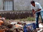 Doações para Lajedinho podem ser feitas em Feira de Santana; veja locais