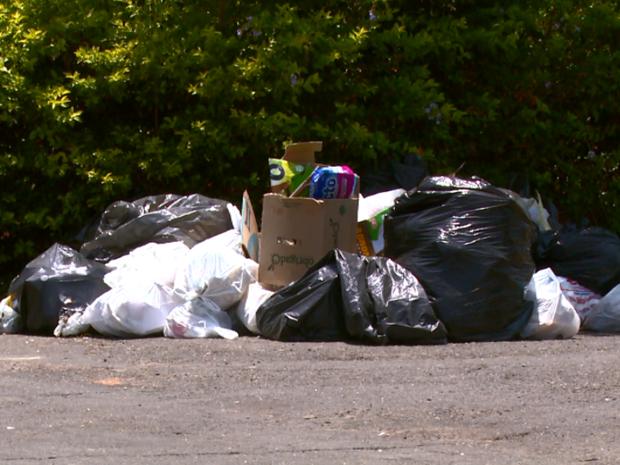 Lixo causa transtorno para moradores de São José do Rio Pardo (Foto: Eder Ribeiro/EPTV)