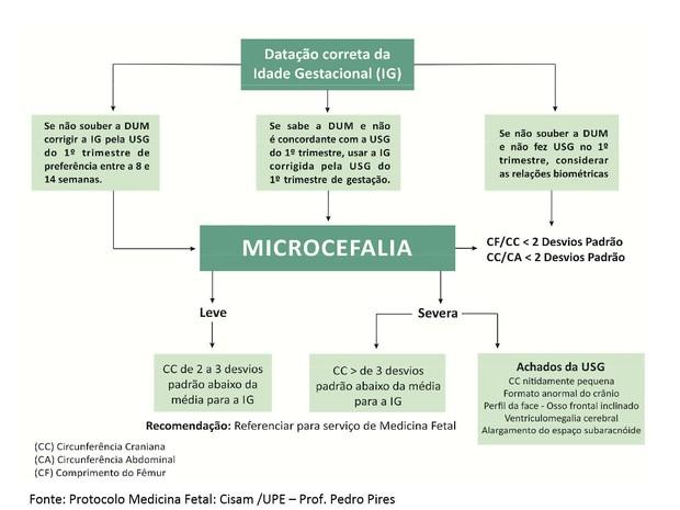 Novo protocolo de microcefalia em Pernambuco estabelece detalhes sobre atendimento de mães e bebês (Foto: Reprodução)