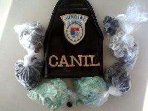 Ao todo foram apreendidas 312 porções de droga (Foto: Divulgação/Guarda Municipal de Jundiaí)