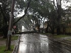 Defesa Civil do Paraná diz que chuva e vendaval atingiram 153 pessoas