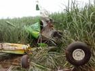 Dono diz que avião agrícola bateu asa em árvore antes de cair e matar piloto