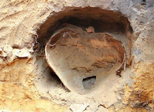 Urna de barro com um esqueleto humano foi encontrada na Zona Sul de Manaus (Foto: Mônica Dias/G1)