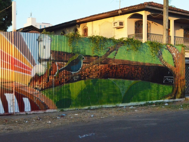 Obra de arte, tapumes, construtora, obras, Amapá, Macapá, JMarcio, (Foto: Fabiana Figueiredo/G1)