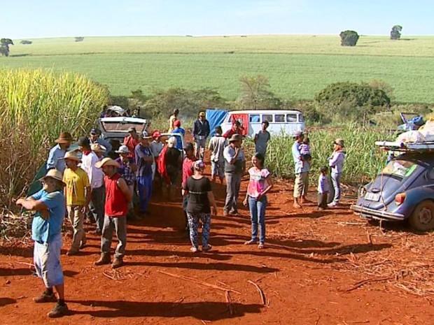 Sem terra montaram barracos em canavial da Usina Maringá (Foto: Ronnei Nicolletti/EPTV)