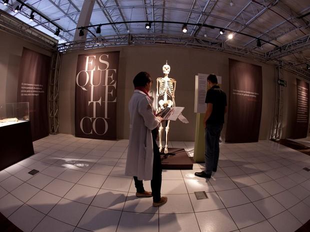 Exposição 'O Fantástico Corpo Humano' já foi vista por 20 milhões de pessoas (Foto: Mário Águas)