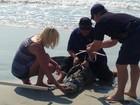 Jacaré assusta banhistas ao ser flagrado no mar em praia nos EUA