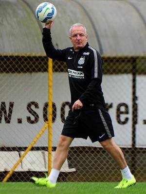 Dorival Júnior quer manter arrancada do Santos no Brasileirão (Foto: Ivan Storti/Santos FC)